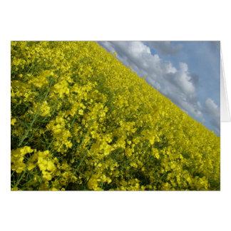 Cielo azul y nublado del agaisnt amarillo de la tarjeta pequeña