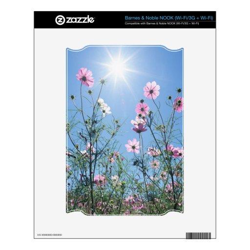 Cielo azul y Wildflowers Calcomanía Para NOOK