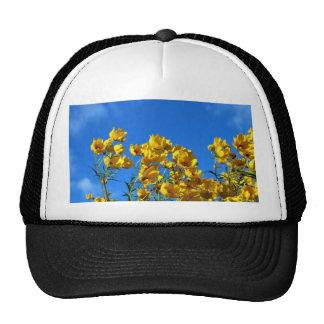 Cielo brillante de los Wildflowers amarillos Gorros
