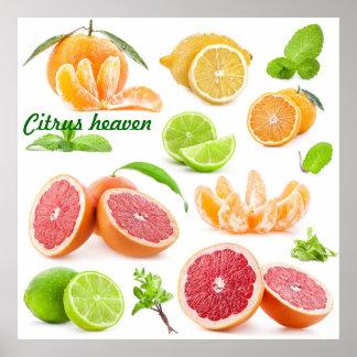 Cielo de la fruta cítrica para esos amantes de la  impresiones