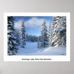 Cielo de la nieve poster