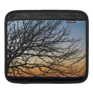 Cielo de la pendiente en invierno fundas para iPads