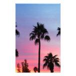 Cielo de la puesta del sol de la palmera del paraí  papeleria