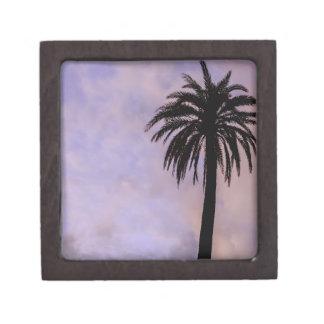 Cielo de la púrpura de la silueta de la palmera caja de recuerdo de calidad