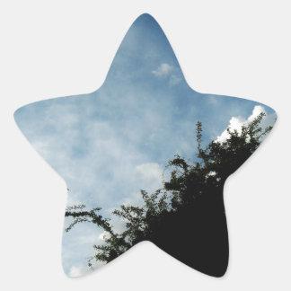 Cielo de la silueta pegatina en forma de estrella