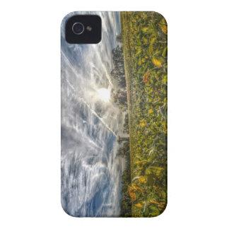Cielo de la vainilla iPhone 4 Case-Mate protector