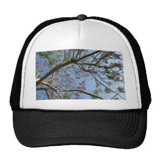 cielo de las flores de las ramas de árbol del jaca gorros