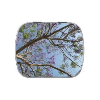 cielo de las flores de las ramas de árbol del jaca