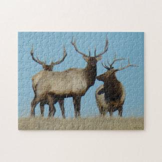 Cielo de los alces de E0060 Bull alineado Puzzles Con Fotos