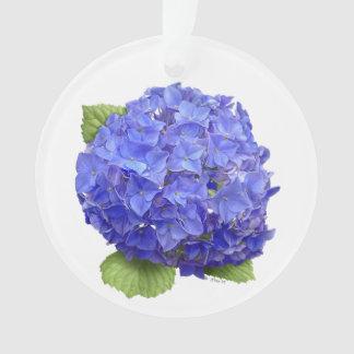Cielo del azul del Hydrangea