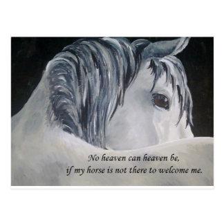 Cielo del caballo postal