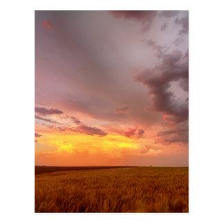 Cielo del este de la puesta del sol de los llanos postal