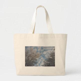 Cielo del invierno bolsas