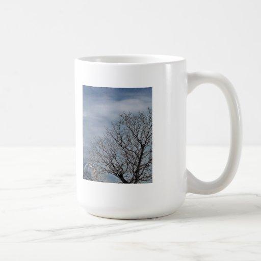 Cielo del otoño con el observatorio tazas de café
