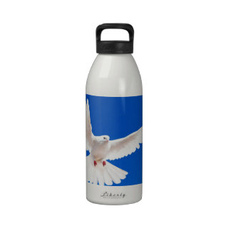 Cielo del vuelo del amor de la paz del pájaro de l botallas de agua
