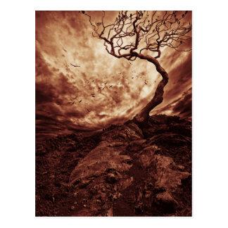 Cielo dramático sobre árbol solo viejo tarjetas postales