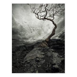 Cielo dramático sobre árbol solo viejo postales