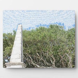 cielo la Florida de los árboles del paisaje del Placas De Plastico