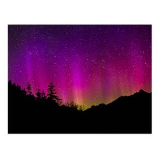Cielo nocturno estrellado de Borealis de la aurora Tarjeta Postal