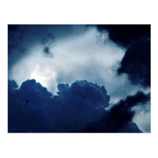 cielo, nubes, pájaro, luz, oscuridad, postal