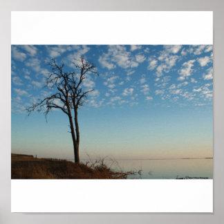 Cielo nublado póster