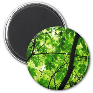 Cielo verde de la hoja imán redondo 5 cm