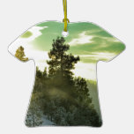 Cielo verde ornamento de navidad