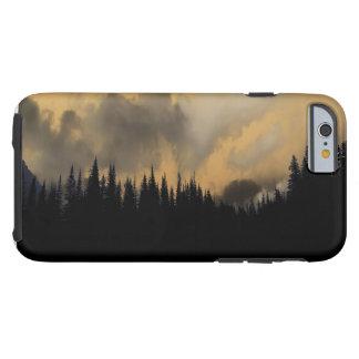 Cielo y árboles amenazadores del Parque Nacional Funda Para iPhone 6 Tough