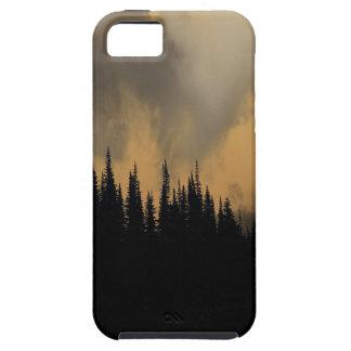 Cielo y árboles amenazadores del Parque Nacional iPhone 5 Funda