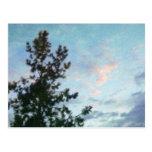 Cielo y árboles tarjeta postal