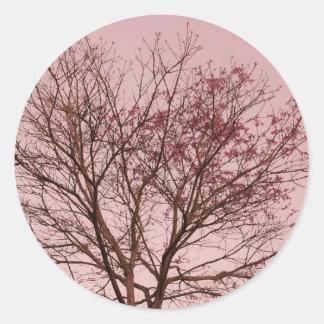 Cielo y fotografía rosados del árbol pegatina redonda