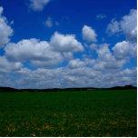 Cielos azules BRITÁNICOS e hierba verde hasta el f Esculturas Fotograficas