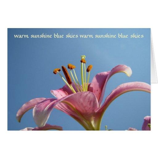 Cielos azules de la sol caliente de la tarjeta de