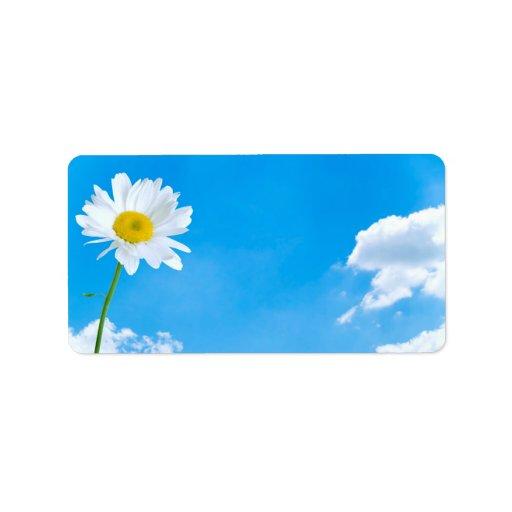 Cielos azules del claro de la margarita del verano etiquetas de dirección