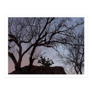 Cielos de la tarde en Arizona Tarjeta Postal