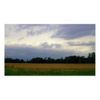 Cielos oscuros que se acercan a las nubes tempestu tarjeta de visita