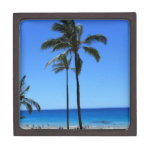 Cielos y palmera hawaianos azules cajas de joyas de calidad