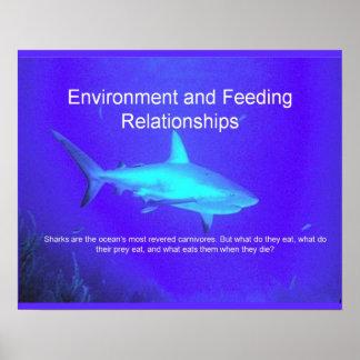 Ciencia ambiente y relaciones de alimentación posters