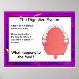 Ciencia, digestión, comenzando en los dientes posters