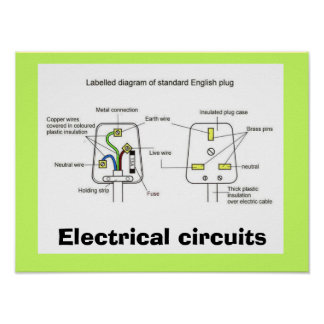 Ciencia, electricidad, enchufes ingleses póster