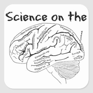 Ciencia en el cerebro pegatina cuadrada