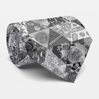 Ciencia microscópica de la diapositiva corbata