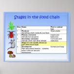 Ciencia, nutrición, etapas en la cadena alimentari posters