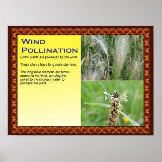 Ciencia, plantas, reproducción, polinización del v póster