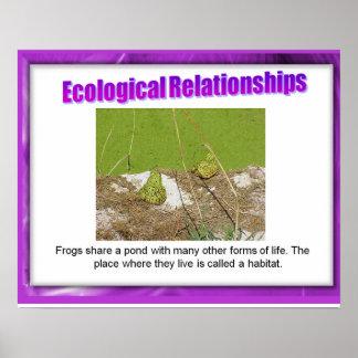 Ciencia, relaciones ecológicas póster