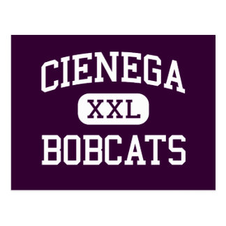 Cienega - Bobcats - High School - Vail Arizona Postcard