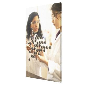Científicos que examinan el modelo molecular impresión en lienzo