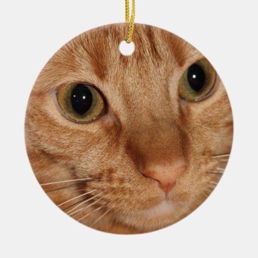Cierre anaranjado de la cara del perfil del gato adorno navideño redondo de cerámica