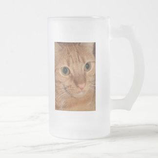 Cierre anaranjado de la cara del perfil del gato taza de cristal