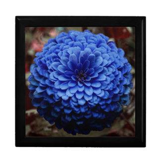 Cierre azul de la flor encima de la foto caja de recuerdo